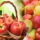Что означает когда снится яблоки?