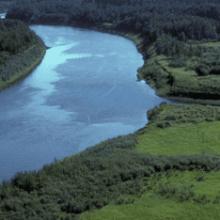Во сне видеть реку — к чему снится река?