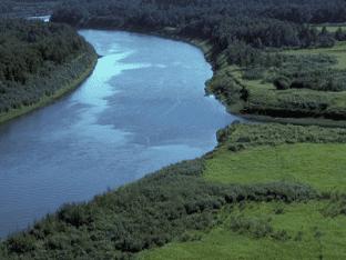 Во сне видеть реку - к чему снится река?