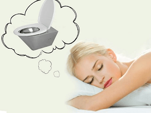 Что означает сон, в котором приснился туалет, сортир?