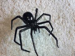 Если приснился черный паук, узнать значение сна