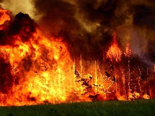 Огонь: увидеть во сне пожар, пламя, сонник