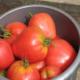 Описание сорта томатов Мазарини: посадка и уход