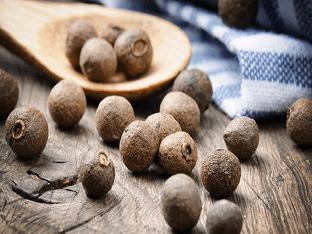 Особенности выращивания универсальной приправы — душистого (ямайского) перца