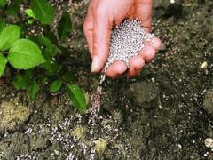 Суперфосфат: применение удобрения, состав, внесение подкормки