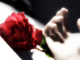 Красивые стихи о любви: короткие и красивые до слез