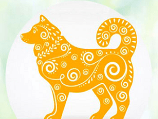 В чем встречать 2018 год Желтой Земляной Собаки