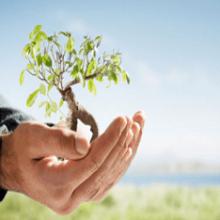 Саморазвитие, как средство достижения успеха