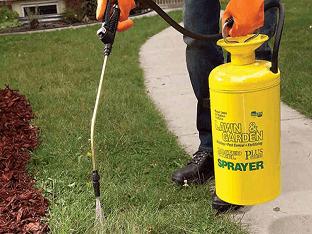 Каким гербицидом воспользоваться, чтоб убить все сорняки?