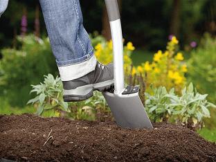Дача, сад, огород - как обойтись без химии
