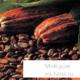 В чем польза какао?