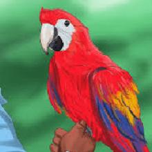 Что означает когда снится Попугай?