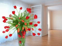 Квартира: покупать новую квартиру во сне