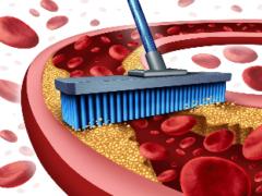 Как почистить кровеносную систему?