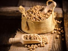 Почему соя (растительный белок) — очень полезен при сердечных заболеваниях?