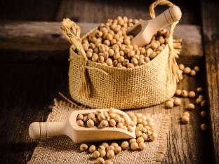 Почему соя (растительный белок) - очень полезен при сердечных заболеваниях?